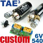 Diving System TAE in 6V with 540 motors -CUSTOM MADE-